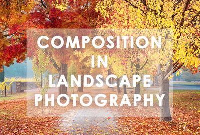 Composition in Landscape Photography Workshop with Mieke Boynton